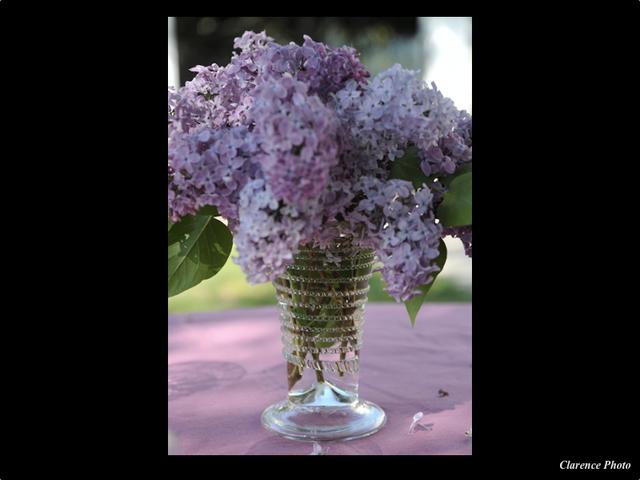 Chope pour des lilas verreries des lumi res createur artisan verrier paris - Verreries des lumieres ...